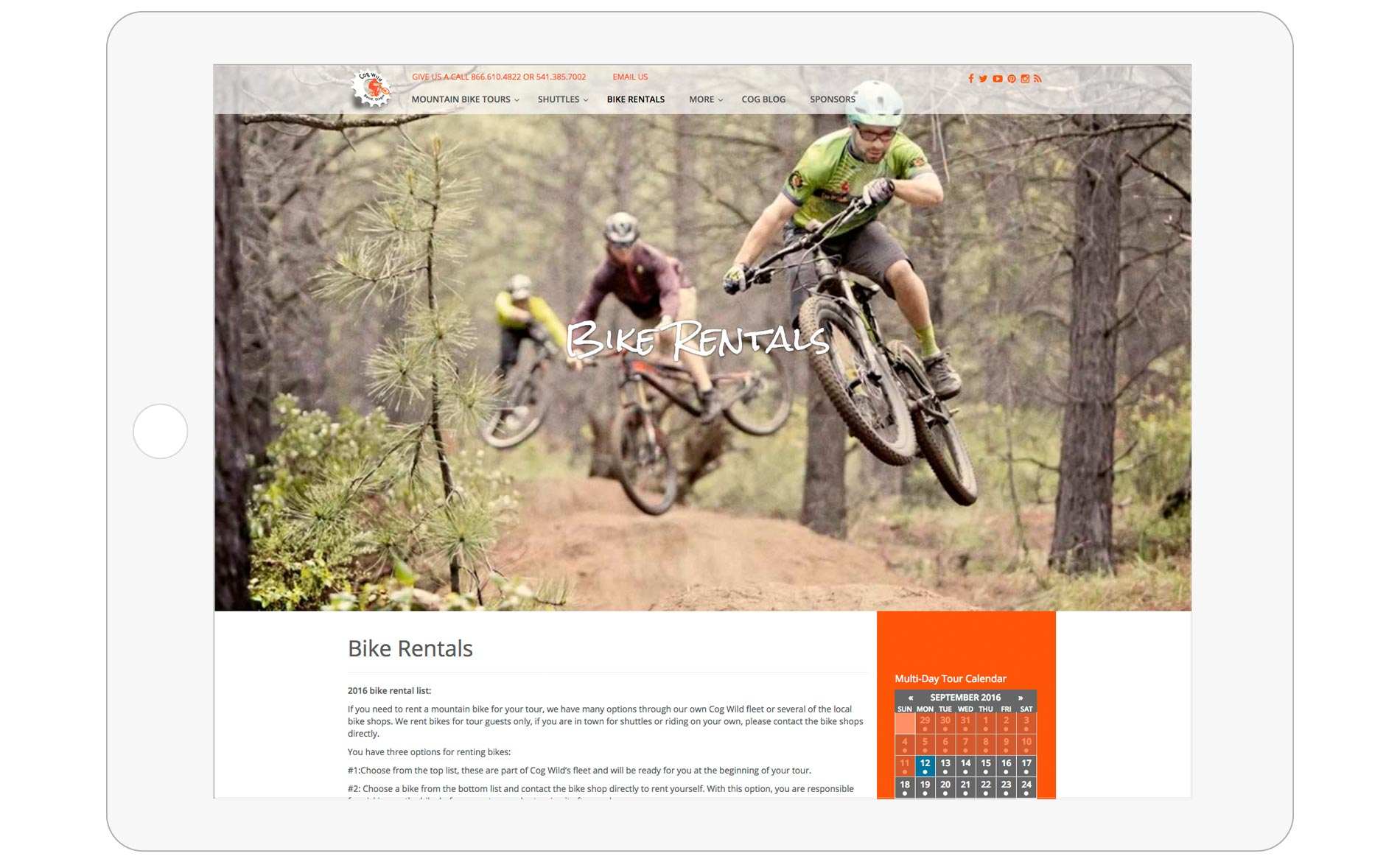 Cog Wild Mountain Bike Tours Web Design